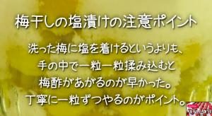 SnapCrab_NoName_2015-6-29_11-29-31_No-00