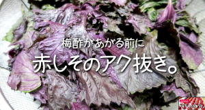 SnapCrab_NoName_2015-6-29_11-33-11_No-00