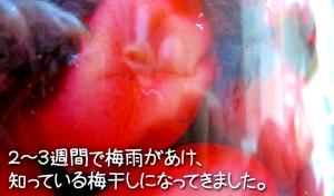 SnapCrab_NoName_2015-6-29_11-49-25_No-00