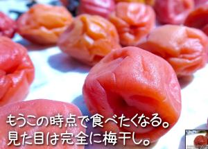 SnapCrab_NoName_2015-6-29_11-57-44_No-00